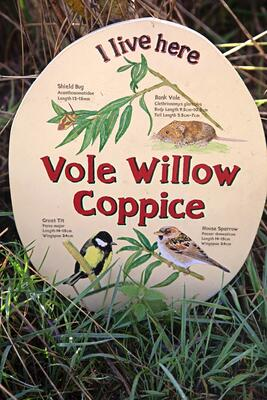 Vole willow coppice handpainted sign in nature reserve