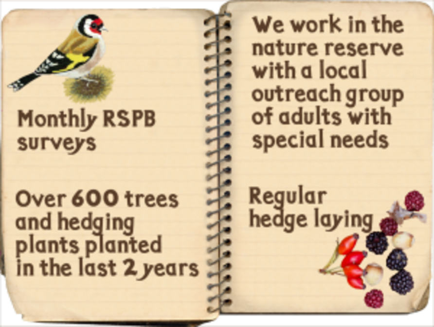 Open notebook with pretty bird illustration and text with information about the environmental practices including monthly RSPB surveys, tree and hedge planting, and hedge laying.