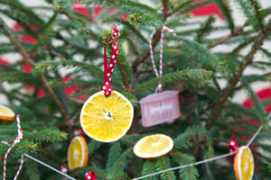 eco friendly Christmas tree decorations