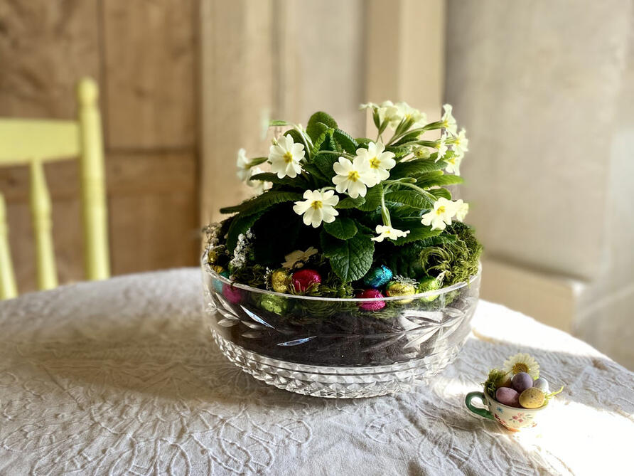 vintage glass trifle bowl upcycled & planted with primrose flowers