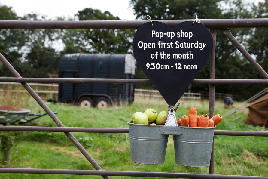 Metal farm gate with blackboard sign with open times