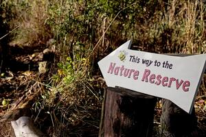 meadow coppice area with hand painted sign