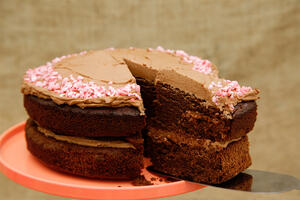 Cut slice of peppermint chocolate cake