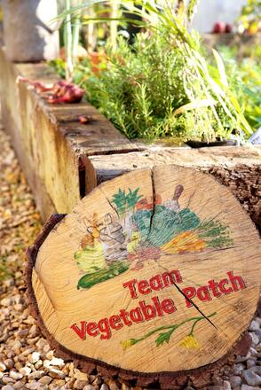 Team vegetable patch at Honeybuns