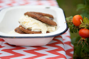 gluten free chocolate cookie vanilla ice cream sandwich