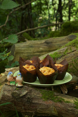 Home baked muffind displayed on a plate in a woodland setting, set on a moss covered log