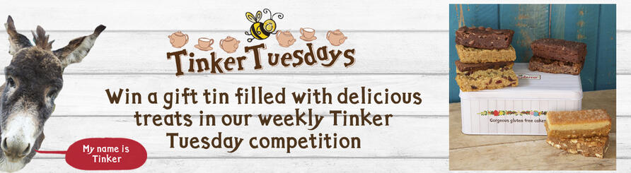 tinker tuesday gluten free cakes and gift tin prize