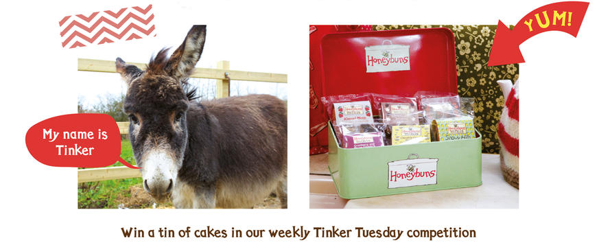 Win gluten free cakes in our weekly Tinker Tuesday competition