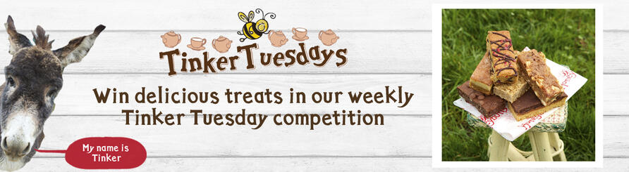 win cakes in our weekly giveaway