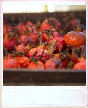 Side view of gorgoeus red rosehips roasted in a baking tray