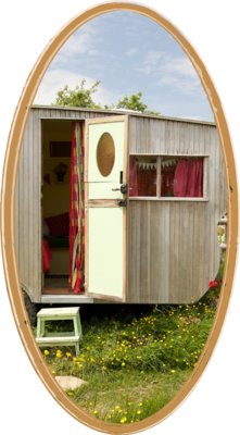 Charming vintage wooden caravan in a meadow with buttercups and flowers