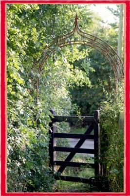 Wooden farm gate surrounded by lots of lush green trees and bushes