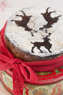gluten free christmas cake made with Honeybuns sponge cake mix
